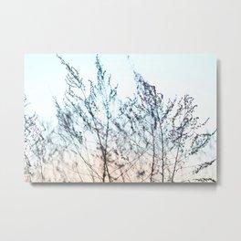 Colors in Nature Macro Metal Print