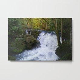Whatcom Falls, Bellingham, WA Metal Print
