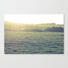 Light in the fields Canvas Print