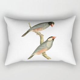 Paddy bird, Rice bird, or Java Sparrow Bird Illustration by William Swainson Rectangular Pillow