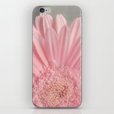 Summer Daisy iPhone & iPod Skin