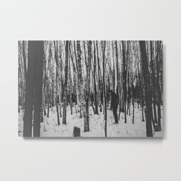 The Stranger in the Forest Metal Print