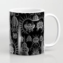 Ernst Haeckel - Spyroidea Coffee Mug