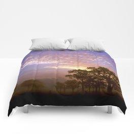 Foggy morning Comforters