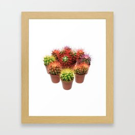 Bunch of multicolor cactuses Framed Art Print