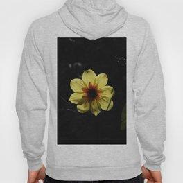 Yellow wind rose Hoody
