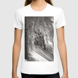 Sunlight through winter forest trees, new snowfall black and white photograph / photography by Rudolf Koppitz T-shirt