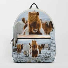 Nordic Wild Backpack