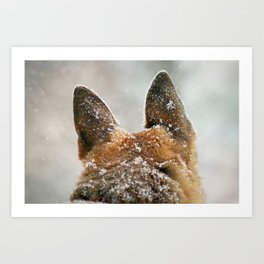 Ears of Distinction Art Print