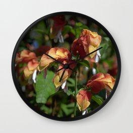 Shrimp Plant - Justicia brandegeana Wall Clock
