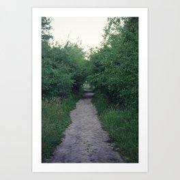 Little Path Art Print