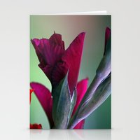 burgundy Stationery Cards featuring Burgundy by Whittle Photography