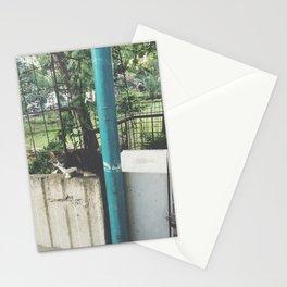 kedi.3 Stationery Cards