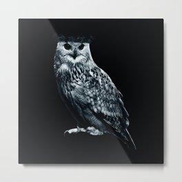 Burning Owl Metal Print