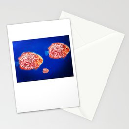 Fish family Stationery Cards