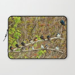 Spring Migration Fallout; 4 swallow species, 1 branch Laptop Sleeve