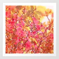Cherry Blossom Canopy Art Print