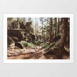 Wild summer - Landscape and Nature Photography Art Print