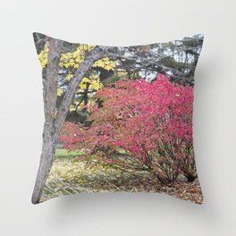 Burning Bush 3 Throw Pillow