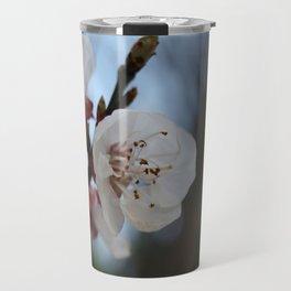 Close Up Apricot Blossom In Pastel Shades Travel Mug