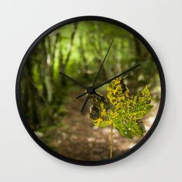 A leaf in the walk path Wall Clock