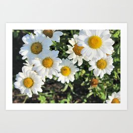 Your My Flower Art Print