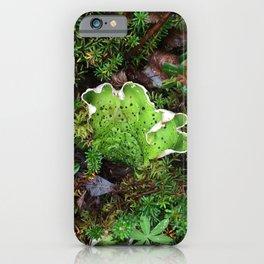 Lichen Light iPhone Case