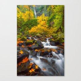 Starvation Creek Falls Canvas Print