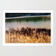 POND LIGHT Art Print