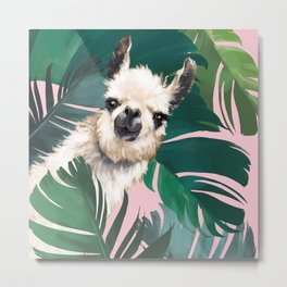 Llama with Banana Leaves Metal Print