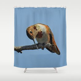 What's Cheese Shower Curtain