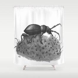Inktobober 2016: Cactus Longhorn Beetle Shower Curtain