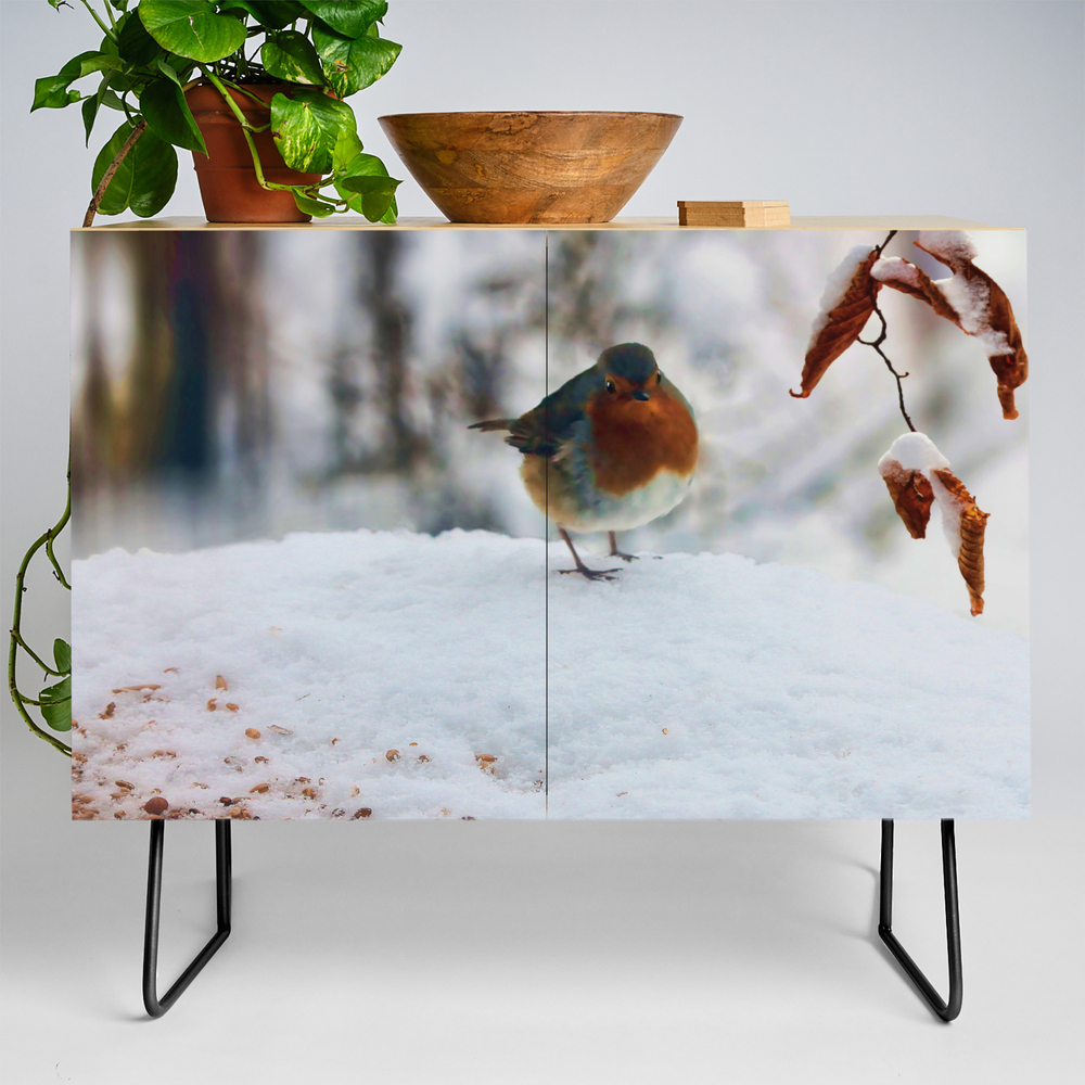 Robin Redbreast Credenza by Valzart (CDZ3880308) photo