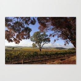 Barossa Valley Autumn Landscape Canvas Print