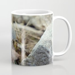 Tiny Toadstool Coffee Mug
