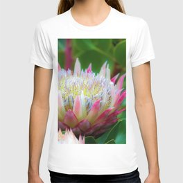 January Greenhouse Blossoms Photographic T-shirt