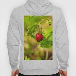 Wild strawberry Hoody