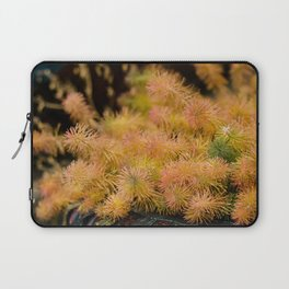 Lovely colors Laptop Sleeve