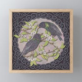 Celtic Starlings Framed Mini Art Print