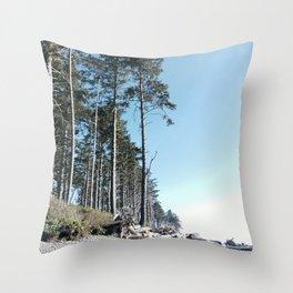 Washington  State beach Throw Pillow