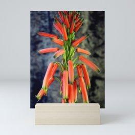 Come Rain Or Come Dry Mini Art Print