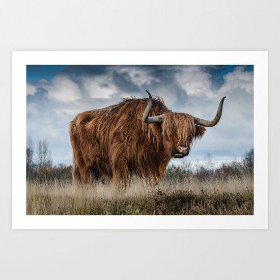 Highlander 1 Art Print