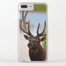 A Bull Elk in the Rocky Mountains Clear iPhone Case
