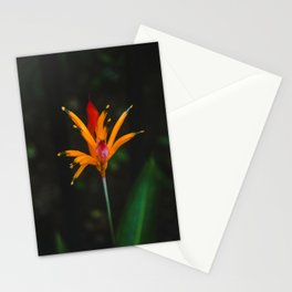 Exotic orange and red rainforest flower with crown-like petals Stationery Cards