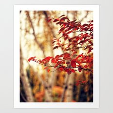 Burning Red Art Print