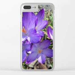 spring greeting Clear iPhone Case