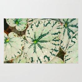 Begonia Leaf Rug