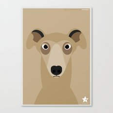Greyhound (Galgo Ingles) Canvas Print