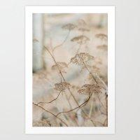 Beauty in the dead of winter Art Print