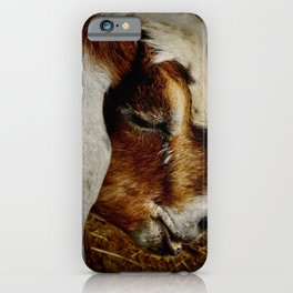 Brown and White Goat iPhone Case